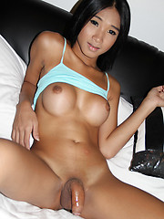 Blue thai angel bareback