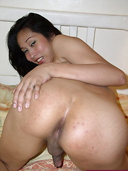 Shy Asian shemale offering her tight brown orifice