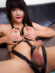Bee In Black Bondage